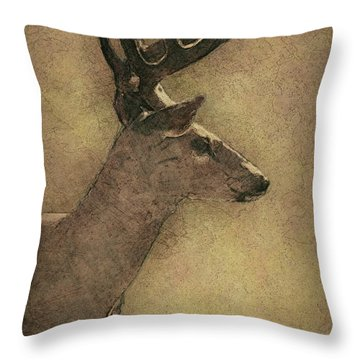 Wisconsin White Tail Buck Sketch Throw Pillow