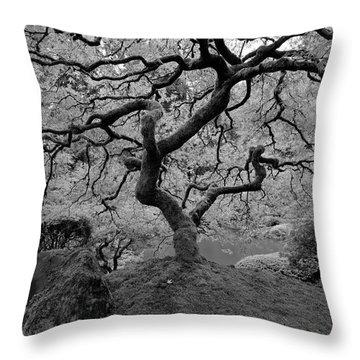 Throw Pillow featuring the photograph Wisdom Bw by Jonathan Davison