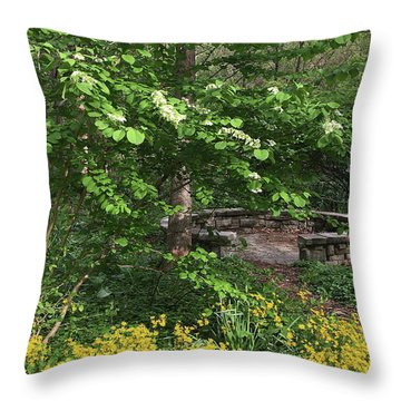 Throw Pillow featuring the photograph Wisdom Circle by Chris Scroggins