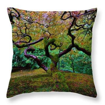 Throw Pillow featuring the photograph Wisdom Tree by Jonathan Davison