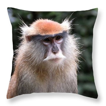 Wise Eyes Throw Pillow