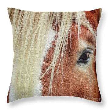 Wise One   White Mane Throw Pillow