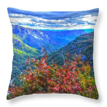 Wiseman's View Throw Pillow