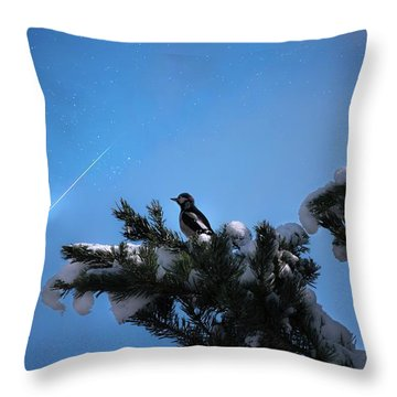 Wish Upon A Shooting Star Throw Pillow by Rose-Marie Karlsen