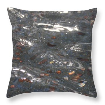 Wishes Throw Pillow by Lauri Novak