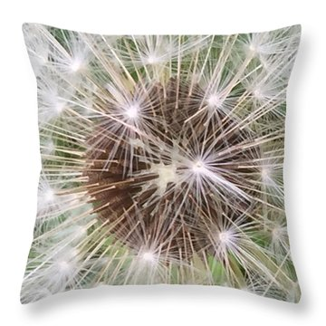 Wishful Thinking Throw Pillow by Mindy Newman