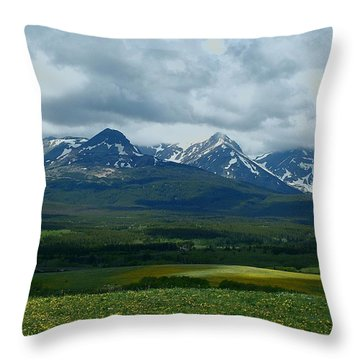 Wishing For Spring Throw Pillow