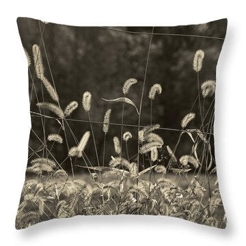 Wispy Throw Pillow by Joanne Coyle