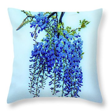 Throw Pillow featuring the photograph Wisteria by Chris Lord