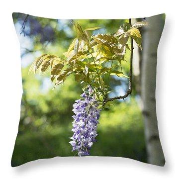 Wisteria Floribunda In Sunlight Throw Pillow