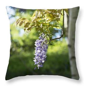 Wisteria Floribunda In Sunlight Throw Pillow
