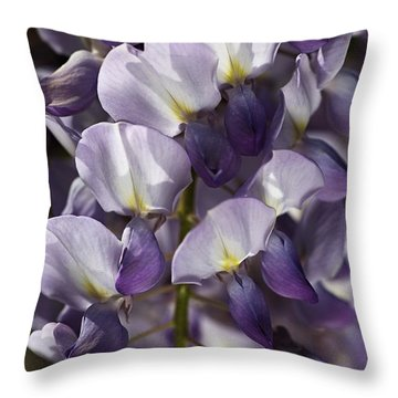 Wisteria In Spring Throw Pillow