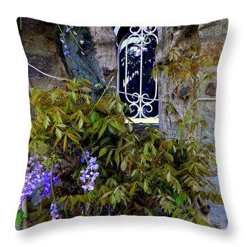 Wisteria Window Throw Pillow by Lainie Wrightson