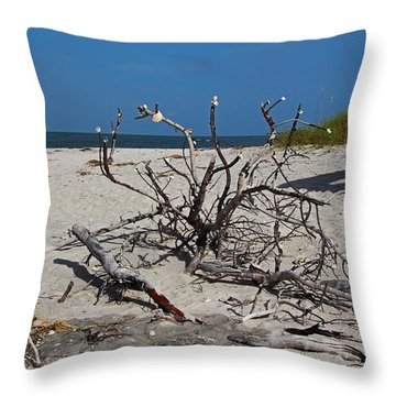 Throw Pillow featuring the photograph Wistful But Unwavering by Michiale Schneider