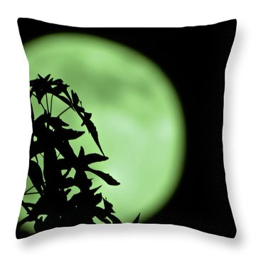Throw Pillow featuring the photograph Witching Hour by DigiArt Diaries by Vicky B Fuller