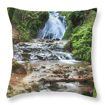 Throw Pillow featuring the photograph With All I Have by Laurie Search