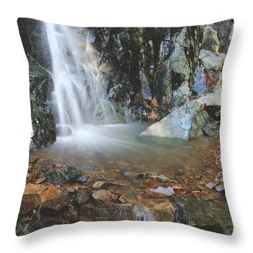 Throw Pillow featuring the photograph With Heart And Soul by Laurie Search