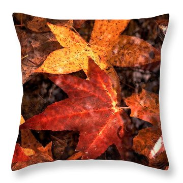 With Love - Autumn Pond Throw Pillow by Theresa  Asher