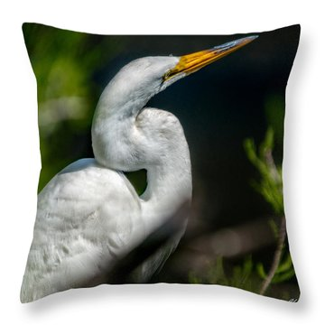 Throw Pillow featuring the photograph White Egret 2 by Christopher Holmes