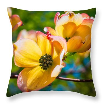 Within Throw Pillow by Craig Szymanski