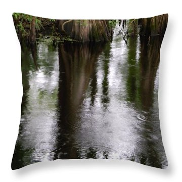 Withlacoochee River Canal Reflections Throw Pillow by Warren Thompson