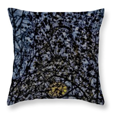 Wm Penn's Woods Throw Pillow