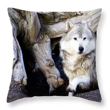 Wolf Den 1 Throw Pillow