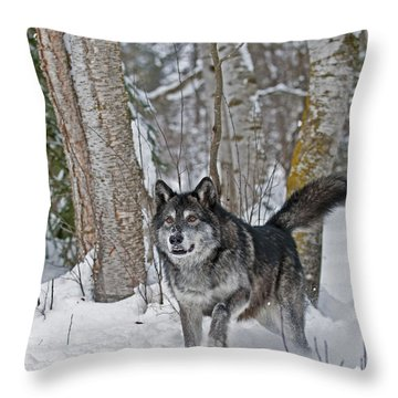 Wolf In Trees Throw Pillow