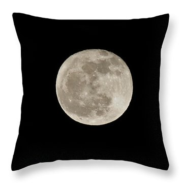 Wolf Moon Throw Pillow by Lara Ellis