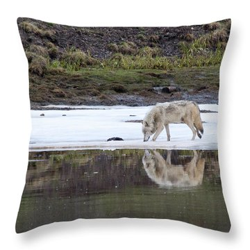 Wolflection Throw Pillow by Steve Stuller