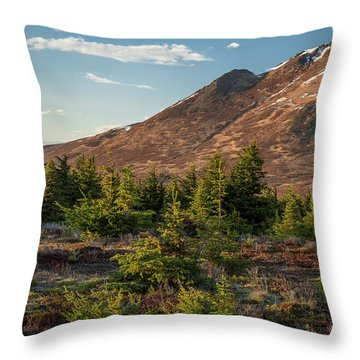 Wolverine Mt Near Sunset Throw Pillow