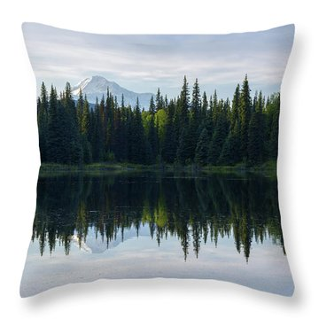 Wonder Throw Pillow