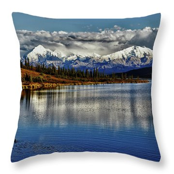 Wonder Lake IIi Throw Pillow by Rick Berk