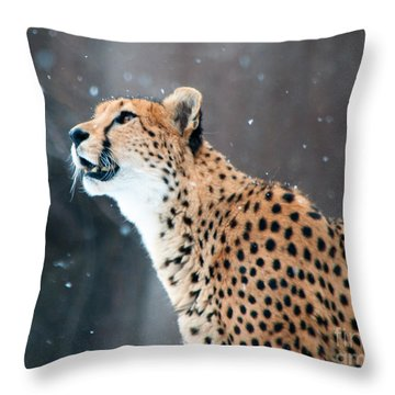 Wonder Of Snow Throw Pillow by Lula Adams