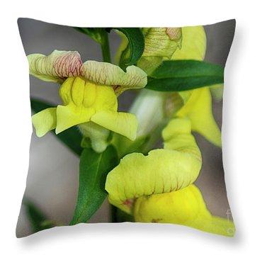 Wonderful Nature - Yellow Antirrhinum Throw Pillow