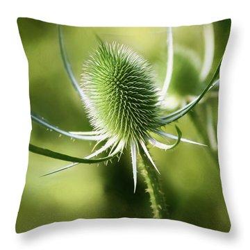 Wonderful Teasel 2 - Throw Pillow