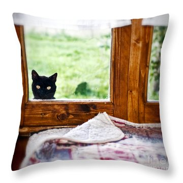 Wondering What's She... Better Investigate Throw Pillow by Silvia Ganora