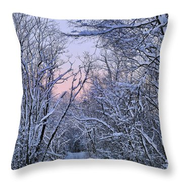 Wonderland Road Throw Pillow