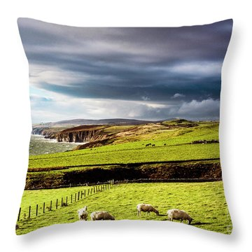 Throw Pillow featuring the photograph Wonders Of Thrumster by Anthony Baatz