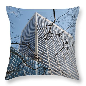 Throw Pillow featuring the photograph Wood And Glass by Rob Hans