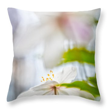 Wood Anemone Spring Wild Flower Abstract Throw Pillow