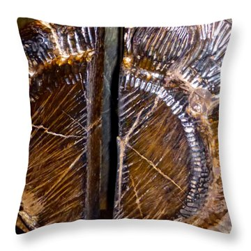 Throw Pillow featuring the photograph Wood Carved Fossil by Francesca Mackenney