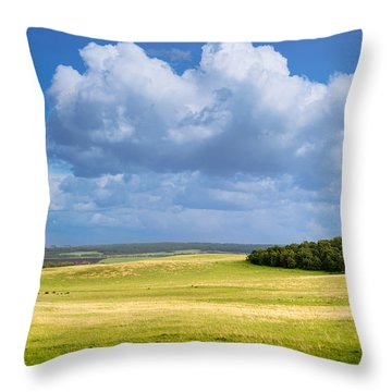 Wood Copse On A Hill Throw Pillow