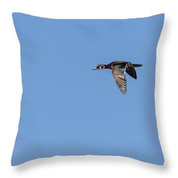 Throw Pillow featuring the photograph Wood Duck 2017-1 by Thomas Young