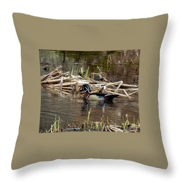 Throw Pillow featuring the photograph Wood Duck  by Betty Pauwels