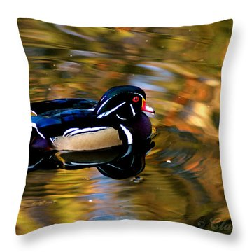 Wood Duck Throw Pillow by Clayton Bruster