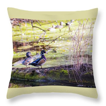 Wood Duck Couple Throw Pillow by Edward Peterson