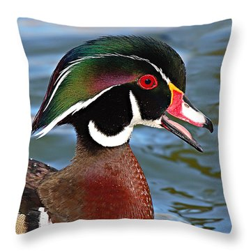 Wood Duck Drake Calling In Spring Courtship Throw Pillow by Max Allen