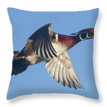 Wood Duck Flying Fast Throw Pillow