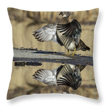 Throw Pillow featuring the photograph Wood Duck Reflection by Mircea Costina Photography
